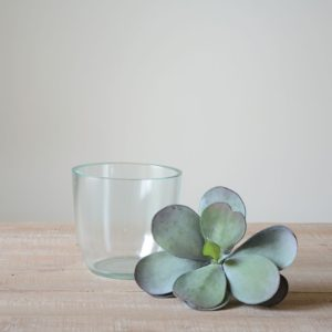 Simple Glass Pot Small 12cm