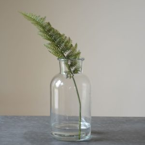 Mini Botanical Jar Large 10x20cm