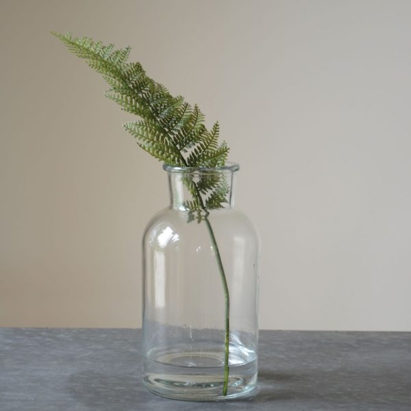 Mini Botanical Jar Large 10x20cm