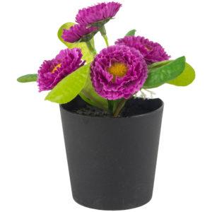 Mini Lilac Mauve