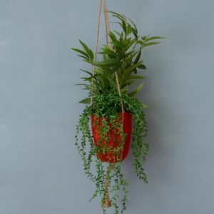 Pot Holder Jute Cayenne Small