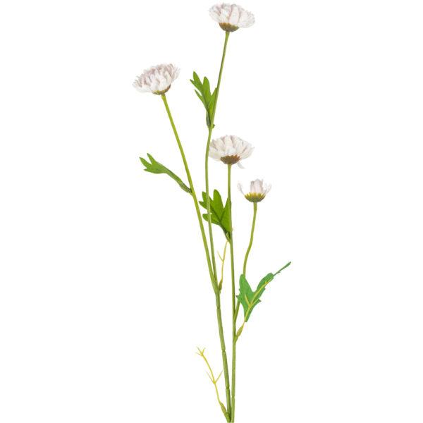 Daisy Spray White