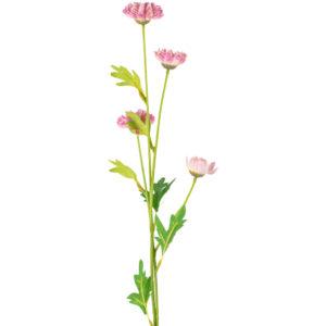 Daisy Spray Pink