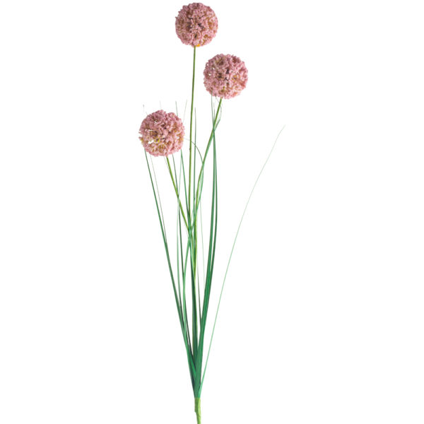 Allium Spray Light Pink