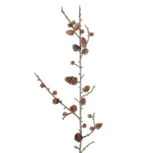 Twig Stem with Cones