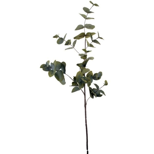 Eucalyptus 90cm