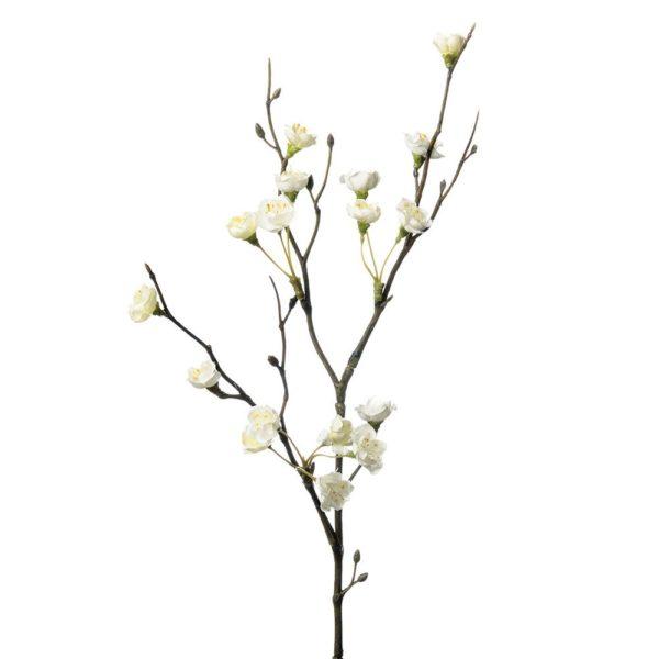 Cherry Branch White