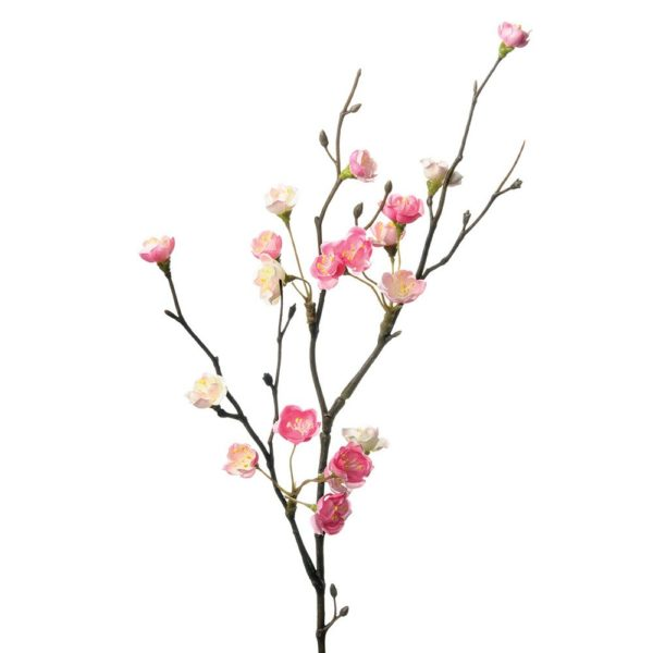 Cherry Blossom Branch Pink
