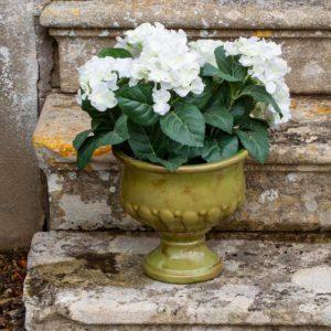 Ceramic Urn Verde Small