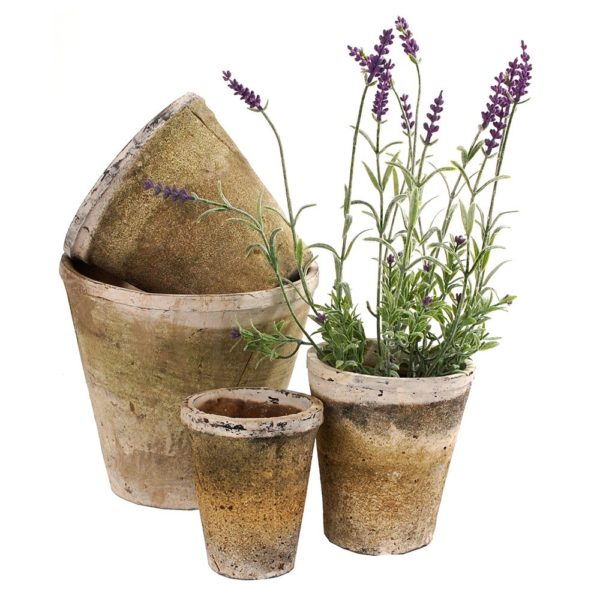 Whitestone Rose Pots
