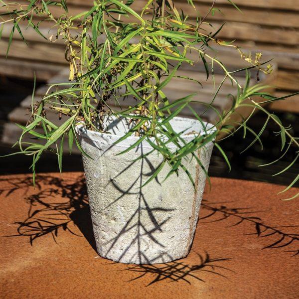 Antiqued Whitestone Rose Pot 20x20cm