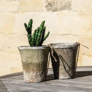 Antiqued Whitestone Cactus Pot 16x12cm