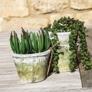 Antiqued Whitestone Cactus Pot 20x15cm