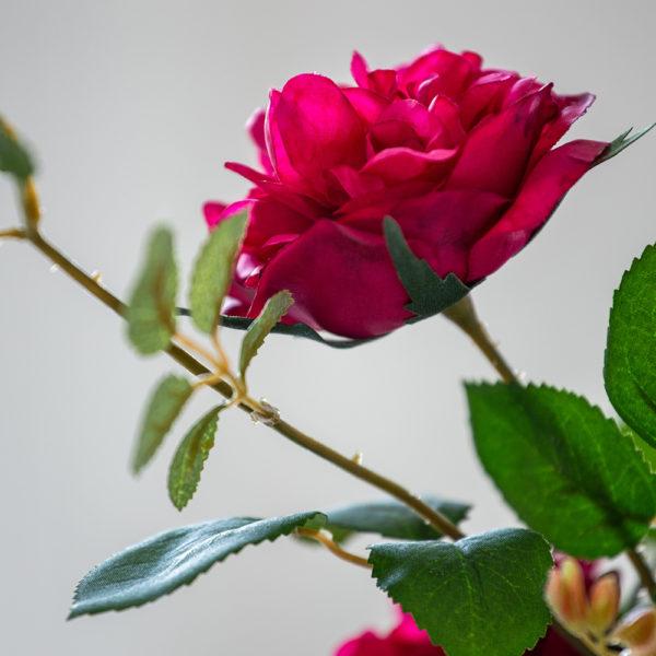 Rose Spray Magenta