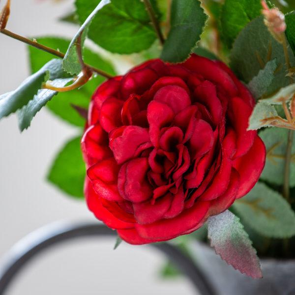 Rose Spray Red