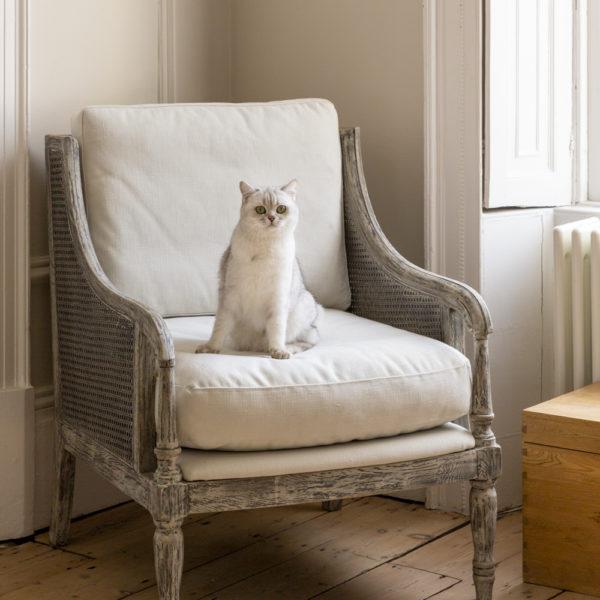Batavia Chair With Rattan