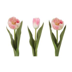Tulip Light Pink Mix