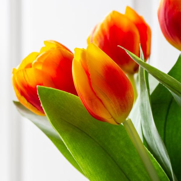 Tulip Burnt Orange Mix